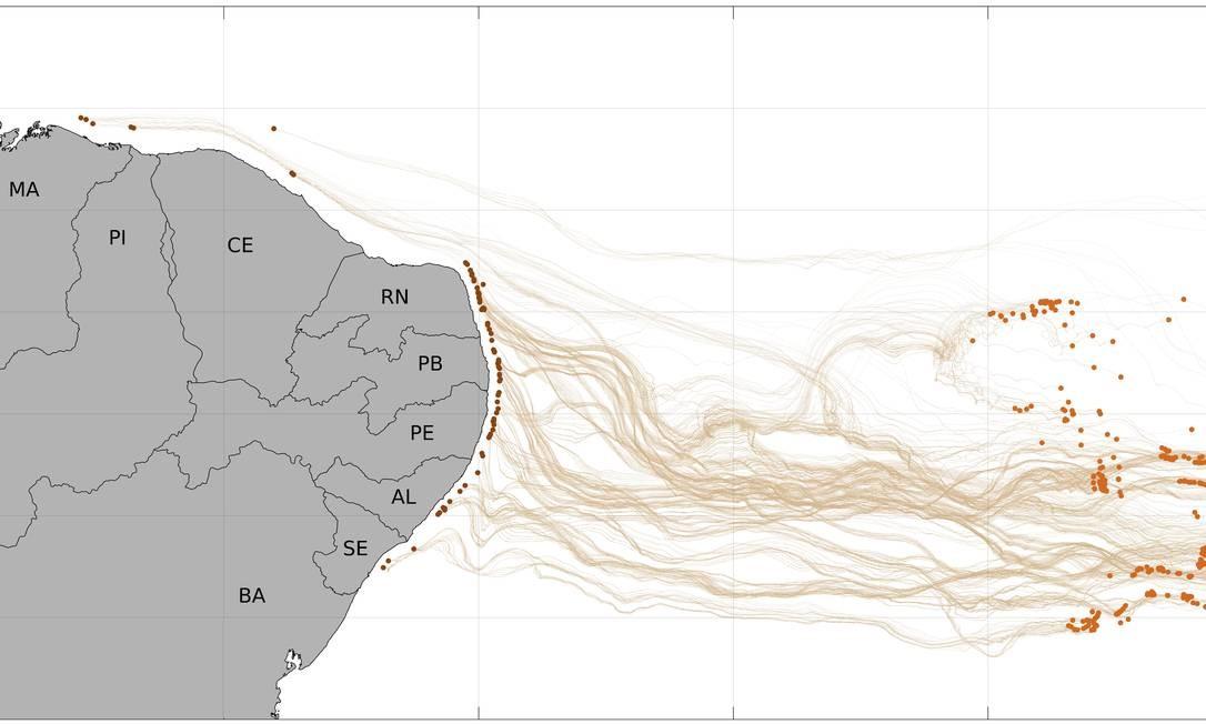 Simulação de computador da Coppe/UFRJ mostra possíveis trajetórias de manchas de óleo que desaguaram no litoral nordestino Foto: Lamce/Coppe/UFRJ