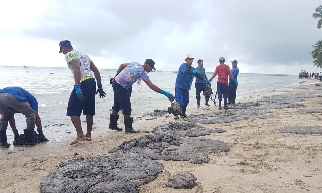 Óleo na Praia dos Carneiros, em Pernambuco Foto: Clemente Coelho Júnior / Instituto Bioma Brasi