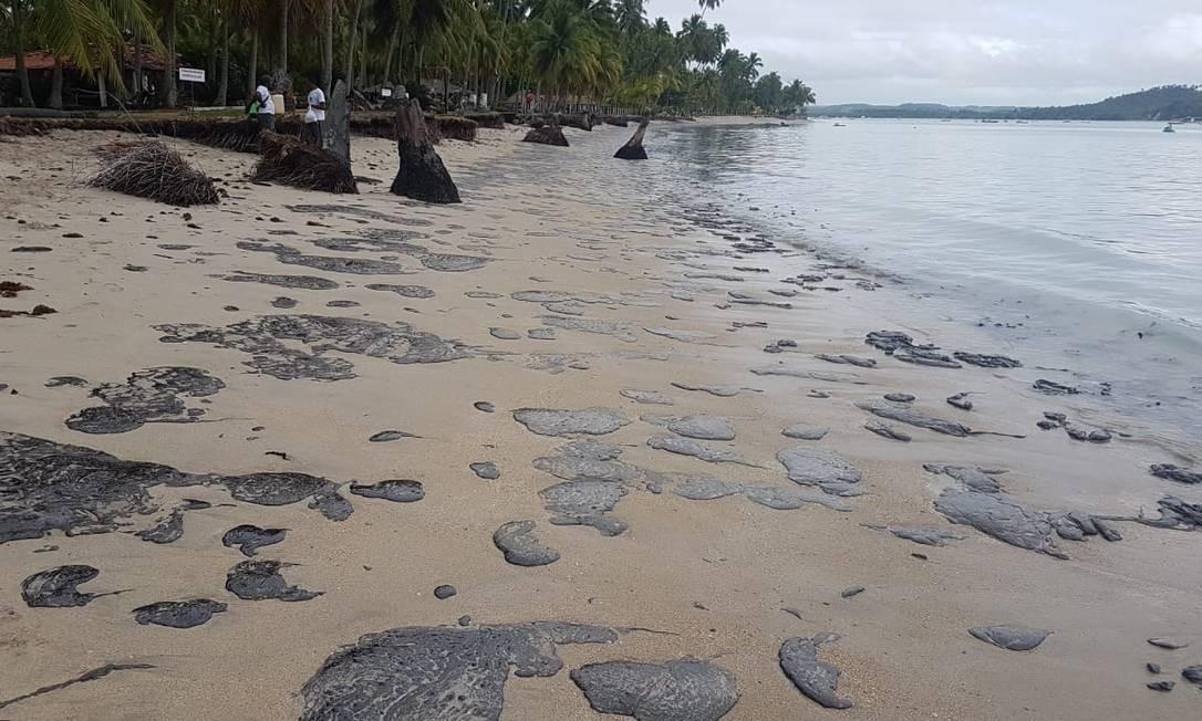 Óleo na Praia dos Carneiros, em Pernambuco Foto: Clemente Coelho Júnior / Instituto Bioma Brasil