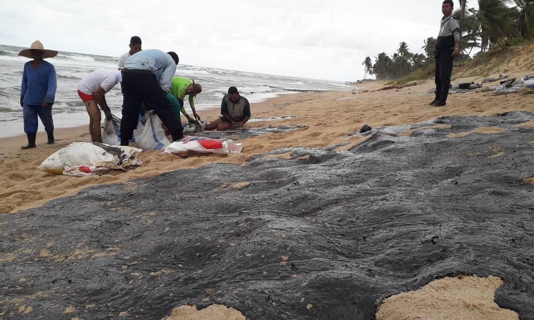 Praia do Forte: mutirão de limpeza em área turística Foto: Yordan Bosco