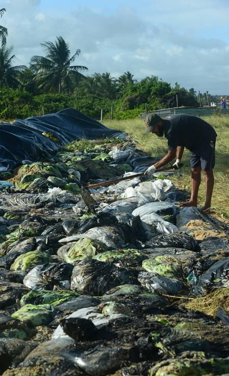 Os sacos com o óleo recolhido pelos voluntários na praia de Carneiros ,Tamandare, em Pernambuco Foto: STRINGER / REUTERS