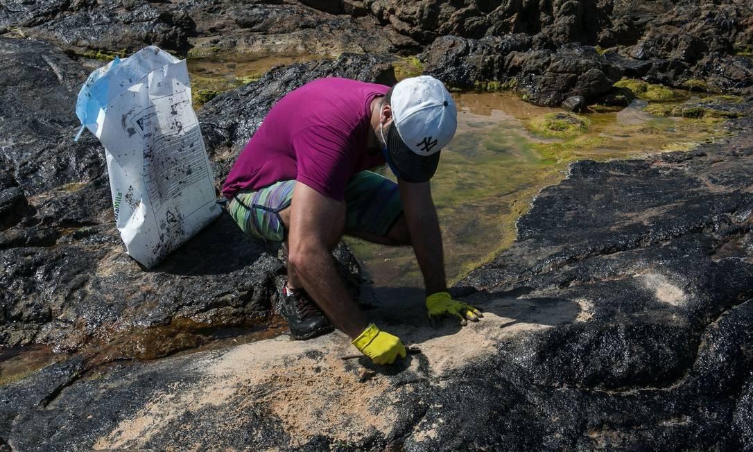 Voluntários trabalham na praia de Pedra do Sal, no bairro de Itapuã, Salvador, Bahia Foto: ANTONELLO VENERI / AFP