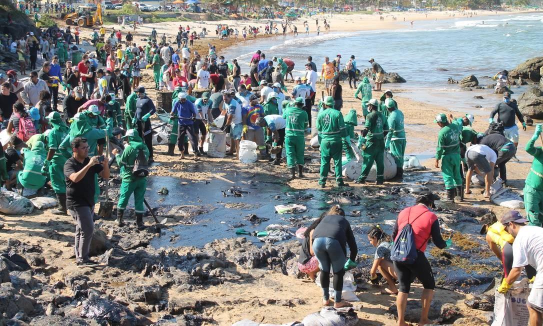 Voluntários e funcionários da Prefeitura de Cabo de Santo Agostinho, no litoral sul de Pernambuco, limpam praia contaminada pelo óleo Foto: Pedro de Paula/Código 19 / Agência O Globo