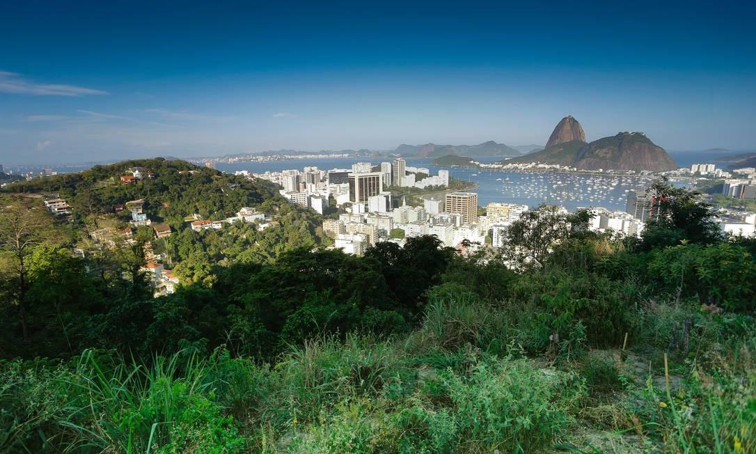 Encosta ainda verde em Laranjeiras, onde construções regulares só podem chegar à cota 50 Foto: ROBERTO MOREYRA / Agência O Globo