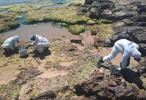 Voluntários limpam óleo de praia em Salvador Foto: Luana Ribeiro