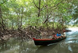 Pescadores nos manguezais da reserva de Canavieiras, no sul da Bahia Foto: MARCO ANTÔNIO TEIXEIRA / WWF / Marco Antônio Teixeira/WWF
