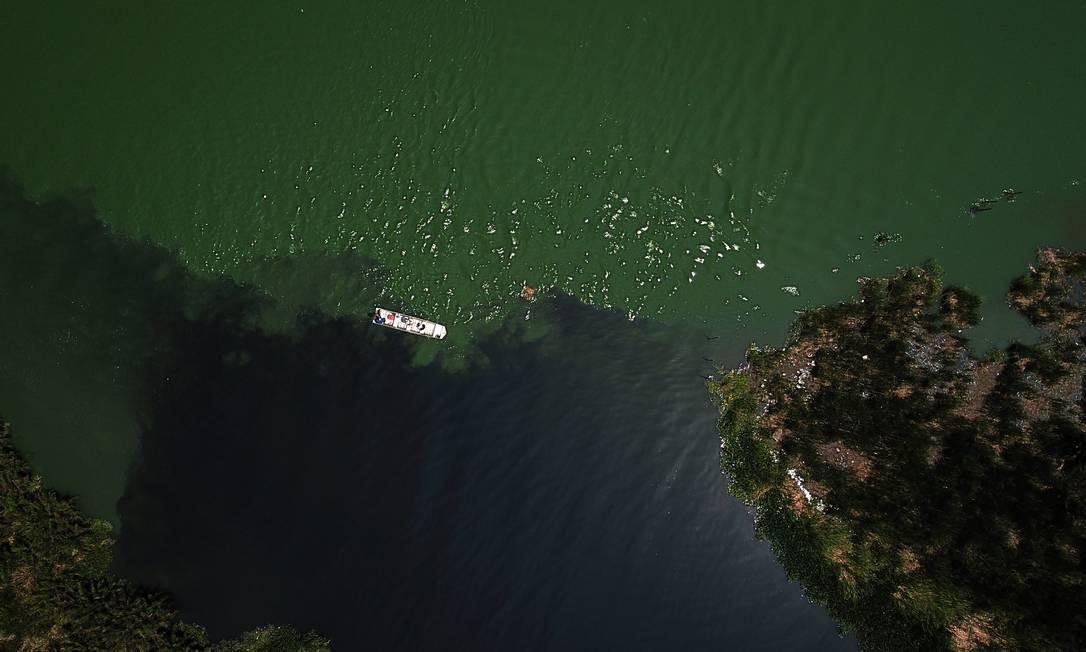 Cianobactérias deixam a água verde, enquanto o esgoto in natura causa manchas negras Foto: Custódio Coimbra / Agência O Globo