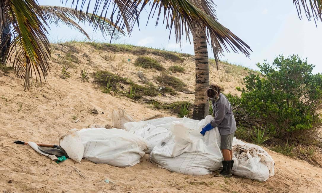Óleo seco é armazenado em grandes bolsas por pescaddor da comunidade de Pocas, no município de Conde, Bahia Foto: Mateus Morbeck / AFP