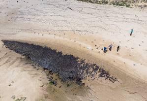 Óleo atinge o litoral do Nordeste desde o fim de agosto Foto: MATEUS MORBECK / AFP