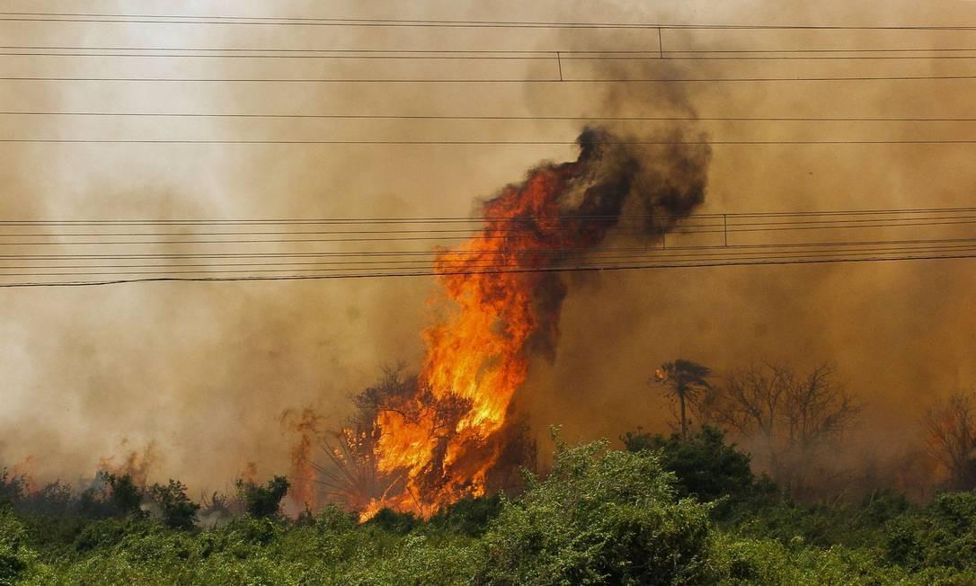 Os pontos mais críticos estão nos municípios de Aquidauana, Miranda e Corumbá (MS), este último o recordista em focos de incêndio no país neste ano, segundo o Inpe, com 5 mil Foto: Chico Ribeiro / Governo do Estado do MS