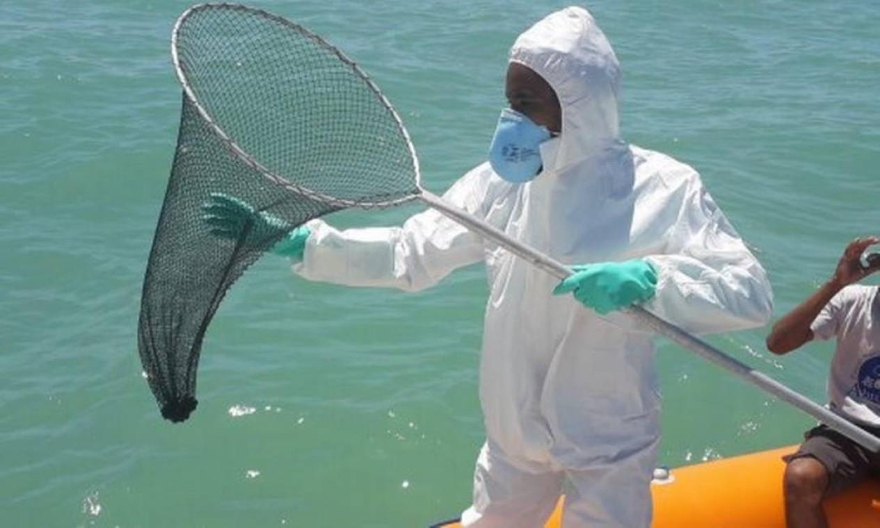 Equipe recolhe fragmentos de óleo na região de Abrolhos Foto: Marinha / Divulgação