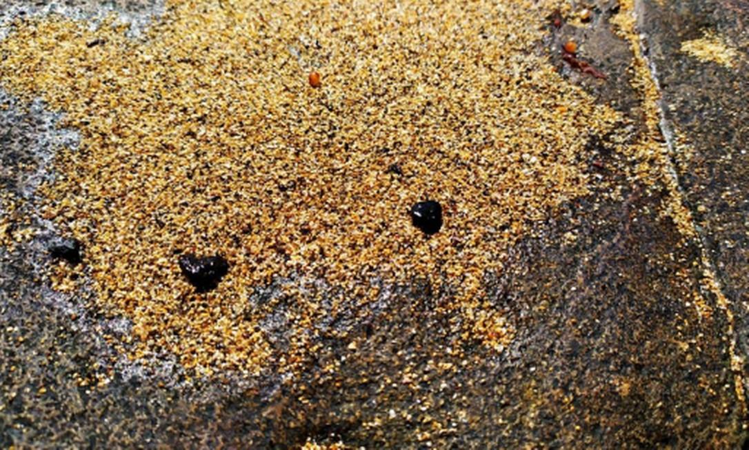 Fragmentos foram detectados pela Marinha na Ilha de Santa Bárbara Foto: Divulgação / Marinha do Brasil