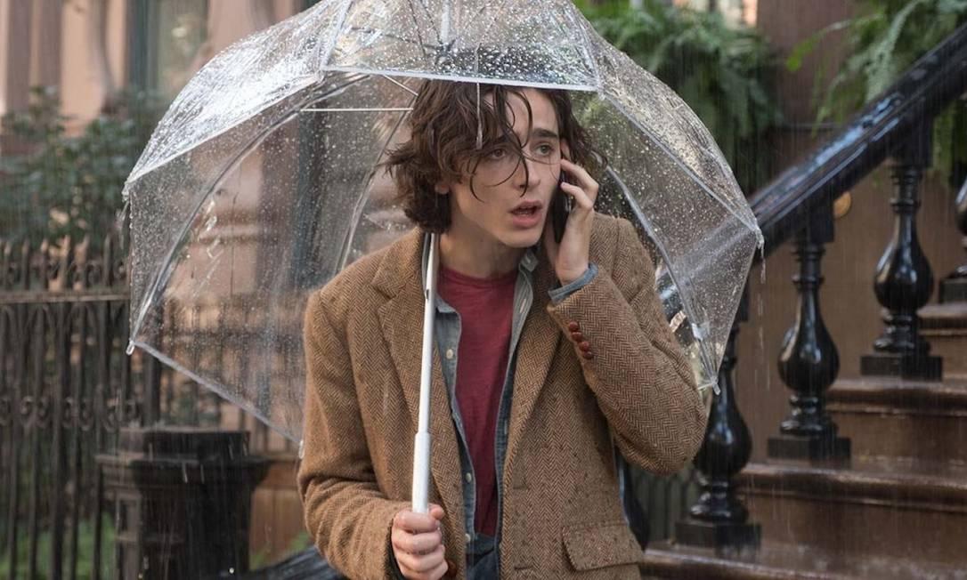Timothée Chalamet em 'Um dia de chuva em Nova York' Foto: Divulgação