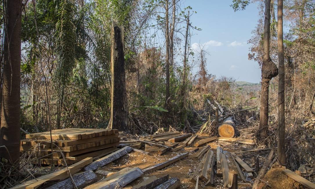 Desmatamento e queimadas consomem a floresta no município de Altamira, no Pará Foto: Edilson Dantas / Agência O Globo