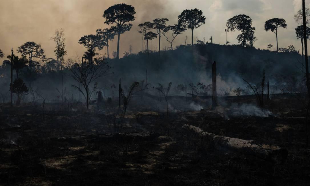 Área da Amazônia desmatada no Pará Foto: NurPhoto / NurPhoto via Getty Images