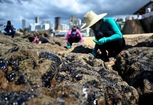Óleo na Praia do Rio Vermelho, em Salvador Foto: Felipe Iruatã/Zimel Press