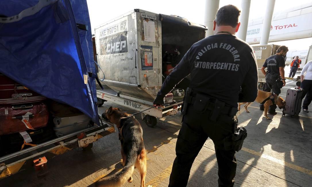 Cães da Polícia Federal procuram drogas e armas no aeroporto internacional do Rio: Galeão é usado por traficantes como rota para África e Europa Foto: Marcelo Piu/26-8-2015