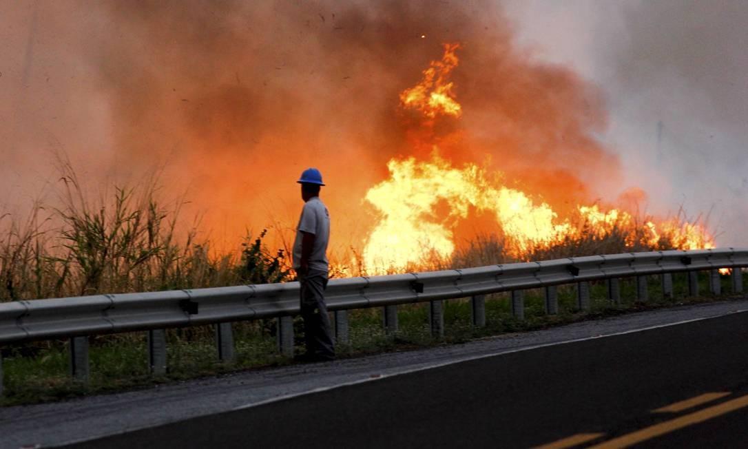 Incêndio à beira da BR-262, no Mato Grosso do Sul Foto: Chico Ribeiro / Governo do Estado do MS