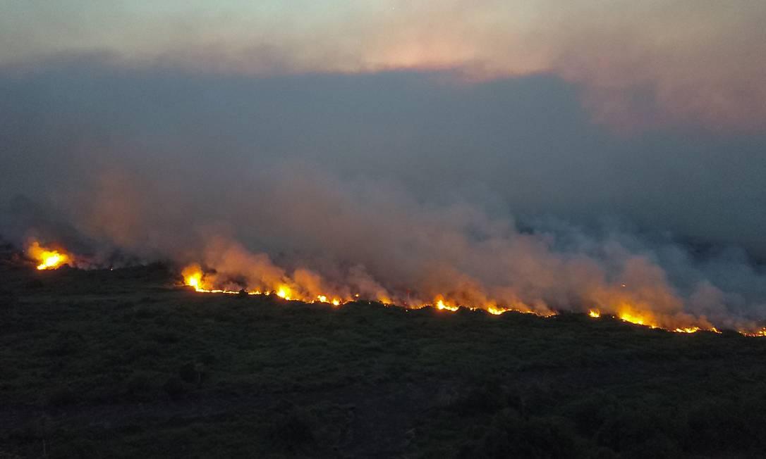 Incêndios castigam o Pantanal, considerado o mais bem preservadobioma brasileiro Foto: CHICO RIBEIRO / AFP
