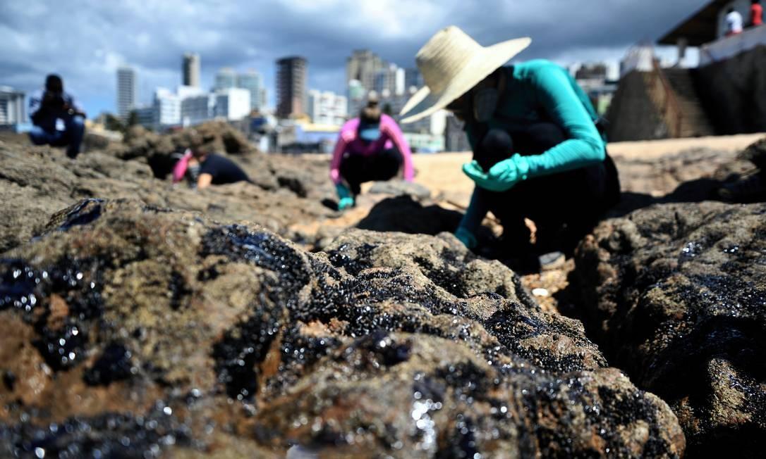 Óleo nas pedras das praias de Salvador, Bahia Foto: Felipe Iruatã / Felipe Iruatã