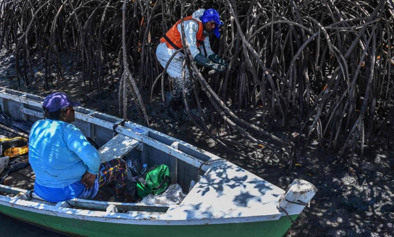 Um voluntário remove o óleo cru derramado dos manguezais, em Cabo de Santo Agostinho, Pernambuco Foto: NELSON ALMEIDA / AFP 31/10/2019