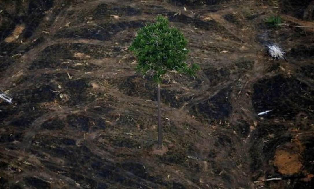 Área desmatada perto de Porto Velho; taxa de desmatamento anunciada nesta segunda-feira é a maior desde 2008 Foto: Reuters/Bruno Kelly