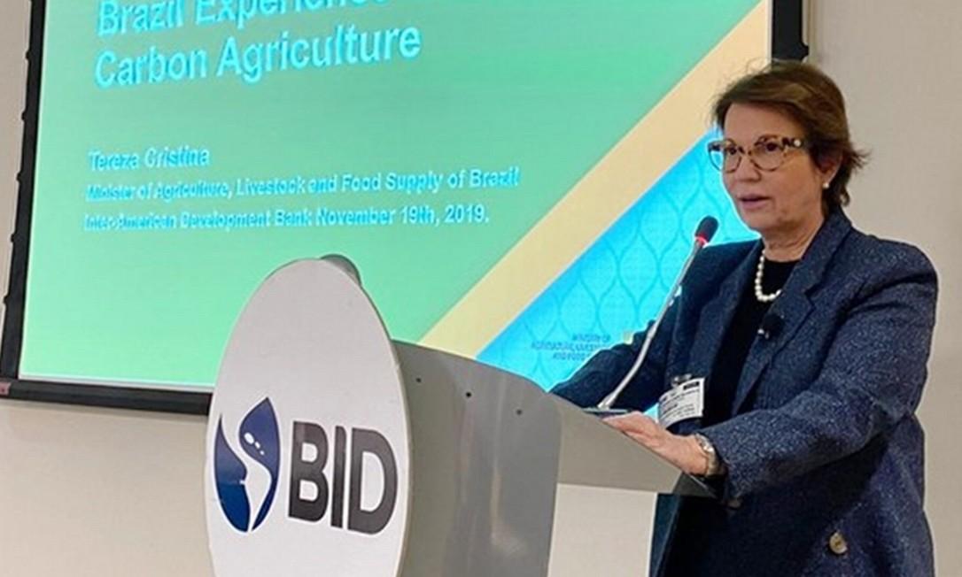 A ministra Tereza Cristina defendeu a legislação ambiental brasileira. Foto: Divulgação