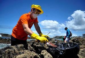 Voluntário coleta óleo em praia de Salvador Foto: Zimel / Felipe Iruatã/Zimel Press/3-11-2019