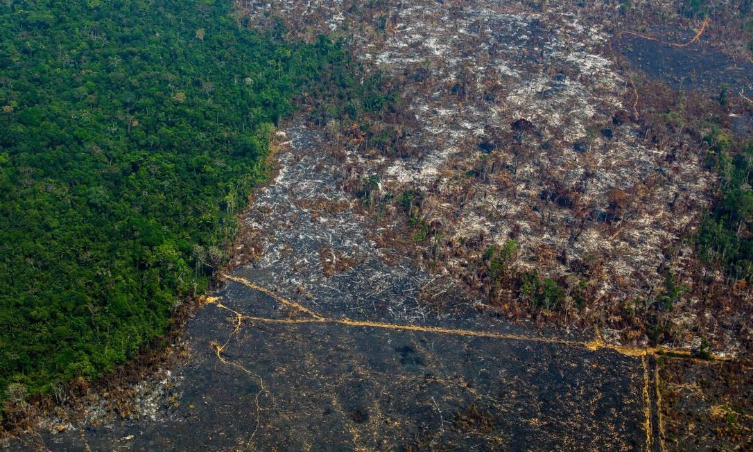 Registro de queimada e desmatamento em Nascentes da Serra do Cachimbo, dentro da Reserva Biológica de Altamira, no Pará. Foto: JOAO LAET / AFP