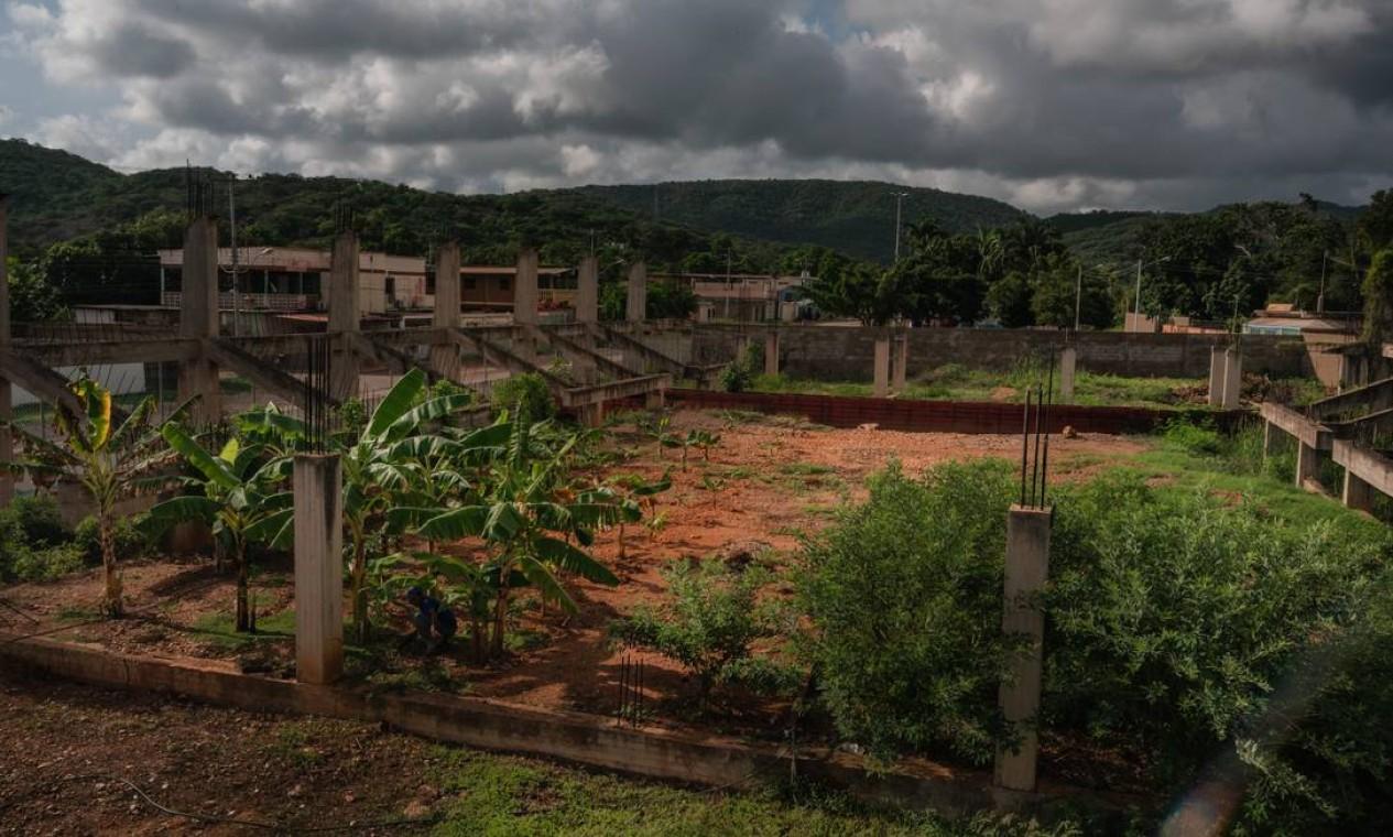 Bananeiras foram plantadas no local do ginásio da Escola Bolivariana Augusto D'Aubeterre, em Boca de Uchire, Venezuela: muitas perguntam se vai ter merenda, antes de decidirem assistir às aulas Foto: ADRIANA LOUREIRO FERNANDEZ / Adriana Loureiro Fernandez/The New York Times