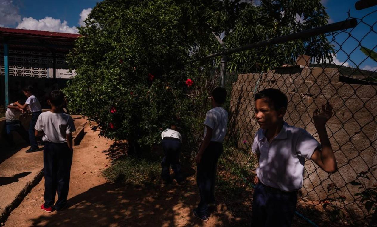 Alunos pegam frutas numa árvore da Escola Augusto D'Aubeterre: crise econômica atinge educação Foto: ADRIANA LOUREIRO FERNANDEZ / Adriana Loureiro Fernandez/The New York Times