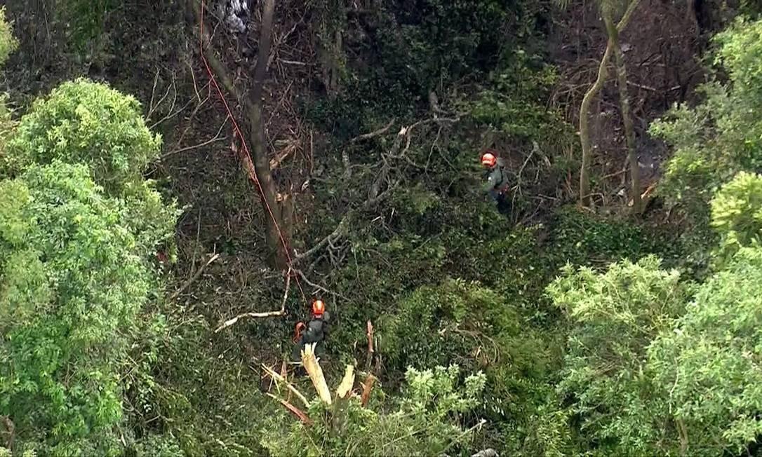 Região da Serra da Cantareira onde equipes de socorristas buscam vítimas de acidente aéreo Foto: Reprodução/TV Globo