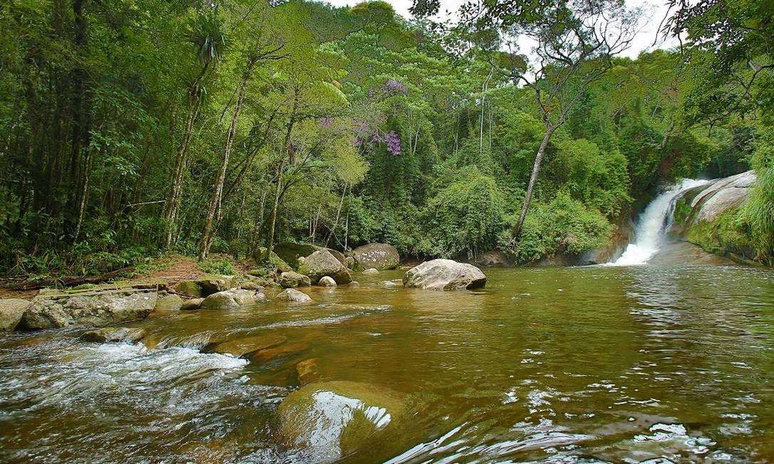 Natureza exuberante na área do Rocio, em Petrópolis Foto: Eduardo Uzal / Agência O Globo