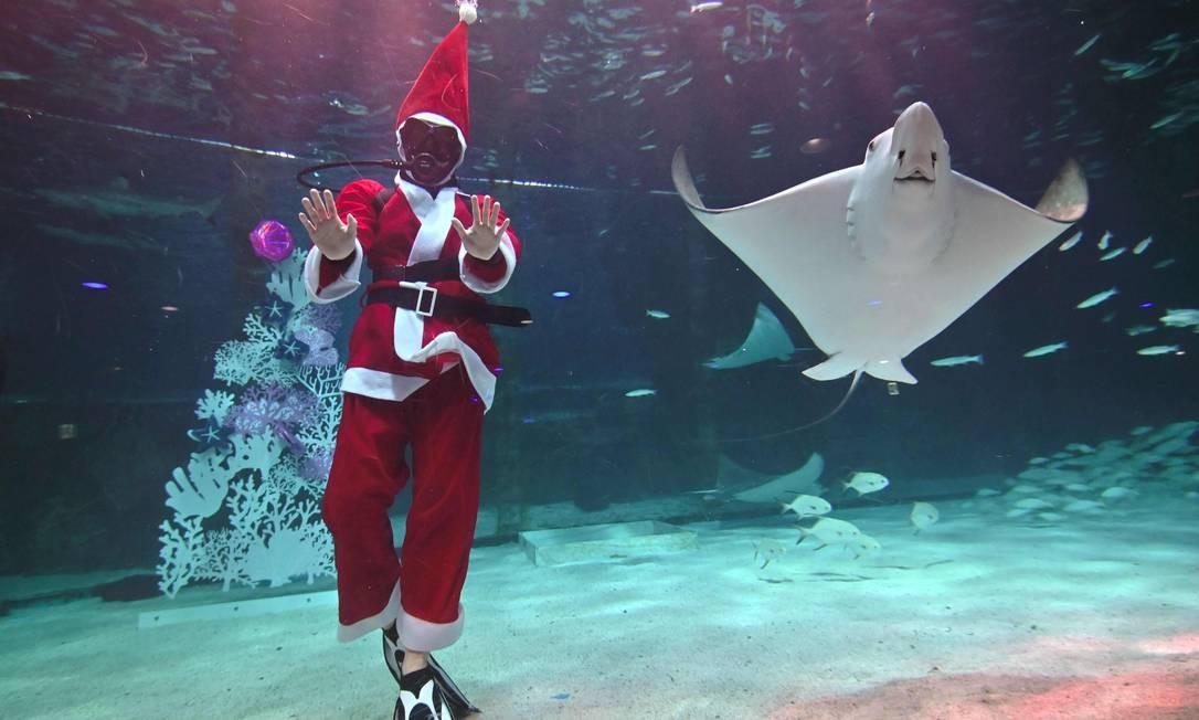 Um mergulhador vestido com roupa de Papai Noel se apresenta entre peixes durante um show subaquático com tema de Natal em um aquário em Seul. O Natal é uma das maiores festas comemoradas na Coréia do Sul Foto: Jung Yeon-je / AFP