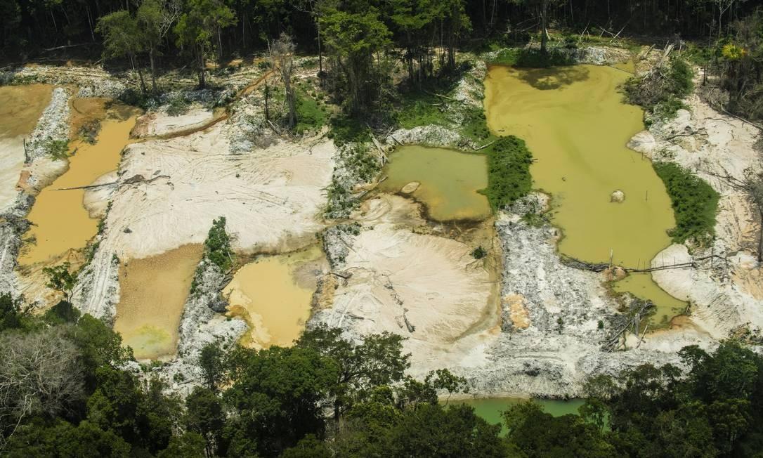 Amazônia destruída: garimpos, extrativismo de madeira, queimadas e pecuária contribuem para devastação da floresta Foto: Divulgação/Greenpeace/Fábio Nascimento