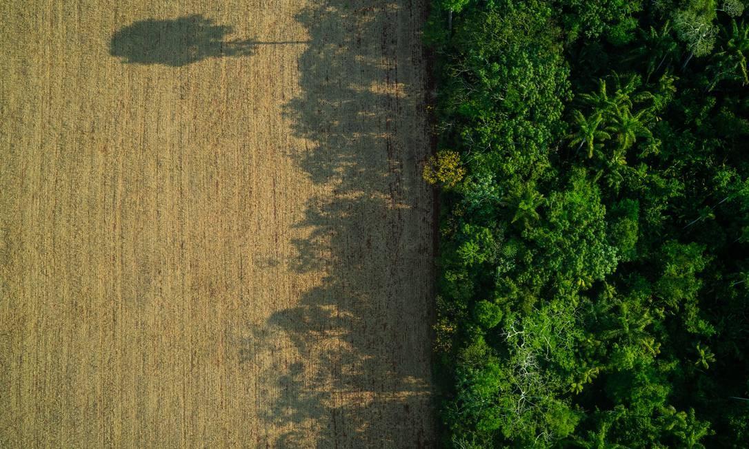 Área de floresta desmatada no Pará; estudo mostrou que, para cada 10% de vegetação derrubada, estação chuvosa perdeu 1 dia Foto: Fábio Nascimento / Greenpeace