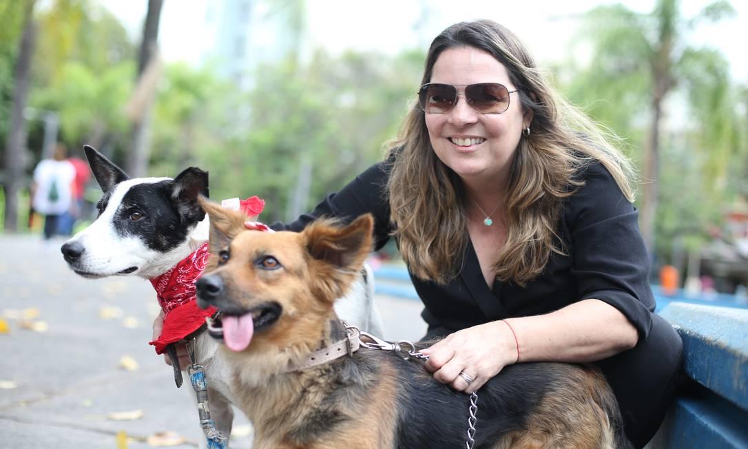 Cristina Linhares com os vira-latas Cleyton e Julie, que estão à espera de um lar Foto: Pedro Teixeira / Agência O Globo