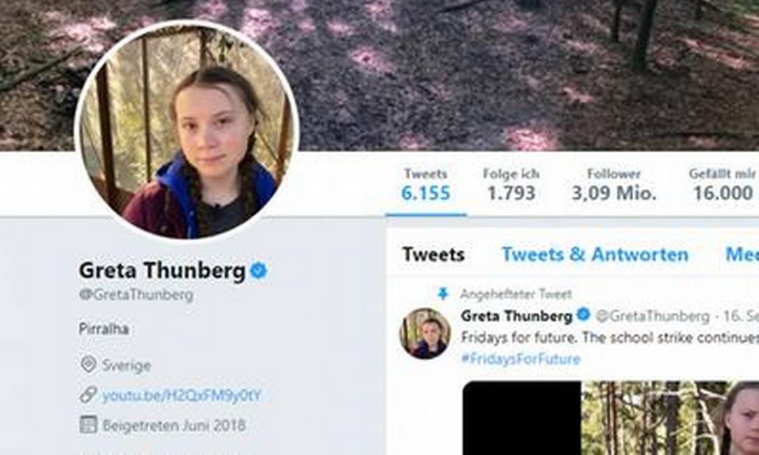 """Em resposta a Bolsonaro, a ativista chegou a trocar a descrição do perfil no Twitter para """"pirralha"""" – ela já voltou ao padrão """"Ativista climática e ambiental de 16 anos de idade com Asperger"""" Foto: Reprodução / Twitter"""