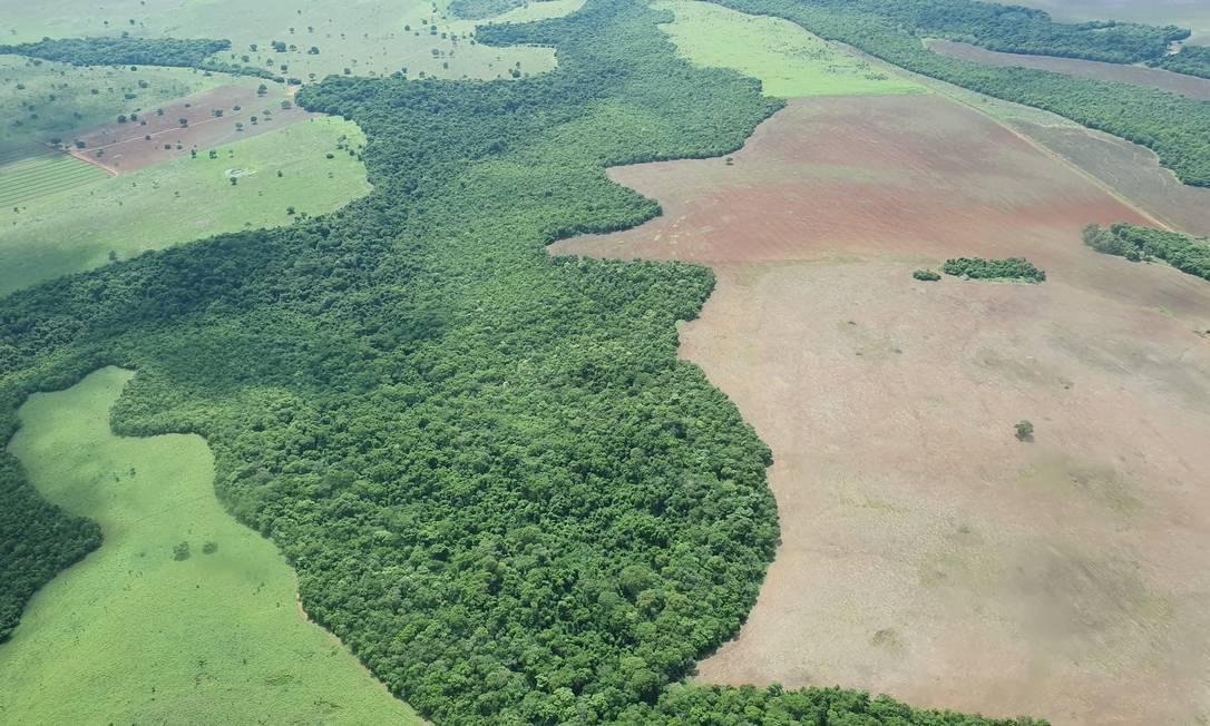 Bacia do Xingu, no Mato Grosso, é composto de ilhas de preservação da Amazônia Foto: Ana Lucia Azevedo / Agência O Globo