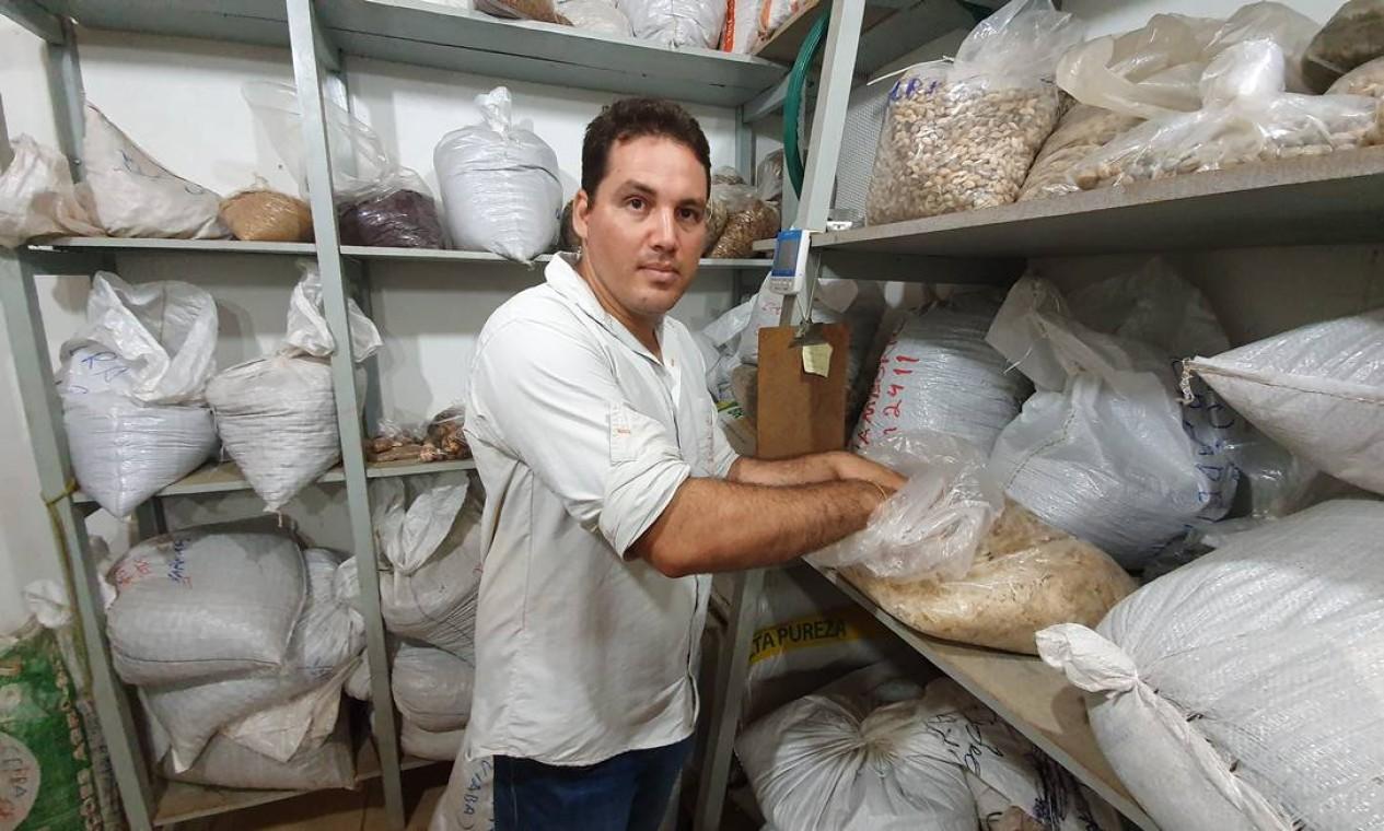 Projeto pioneiro: Heber Queiroz Alves, coordenador de Restauração Florestal do ISA na Bacia Xingu-Araguaia, afirma que a técnica de muvuca acelera e facilita o processo de restauração de florestas Foto: Ana Lucia Azevedo / Agência O Globo