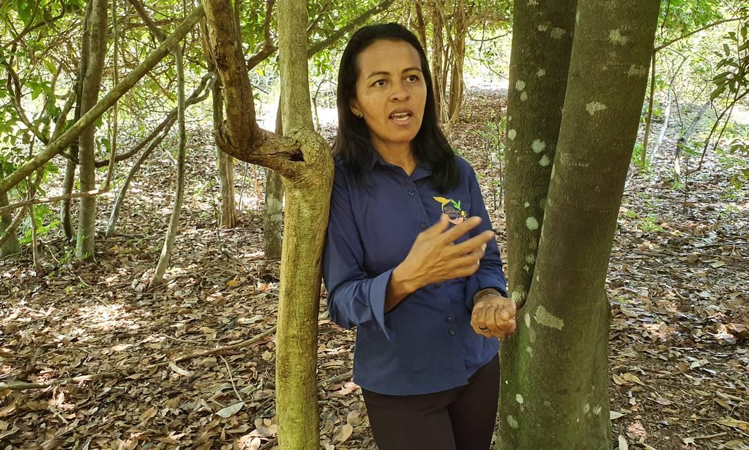 """Poder feminino: a engenheira florestal Claudia Alves de Araújo, uma das diretoras da Rede de Sementes do Xingu, diz que semear florestas aumentou a participação feminina numa região onde as mulheres muitas vezes são """"invisíveis"""" Foto: Ana Lucia Azevedo / local"""