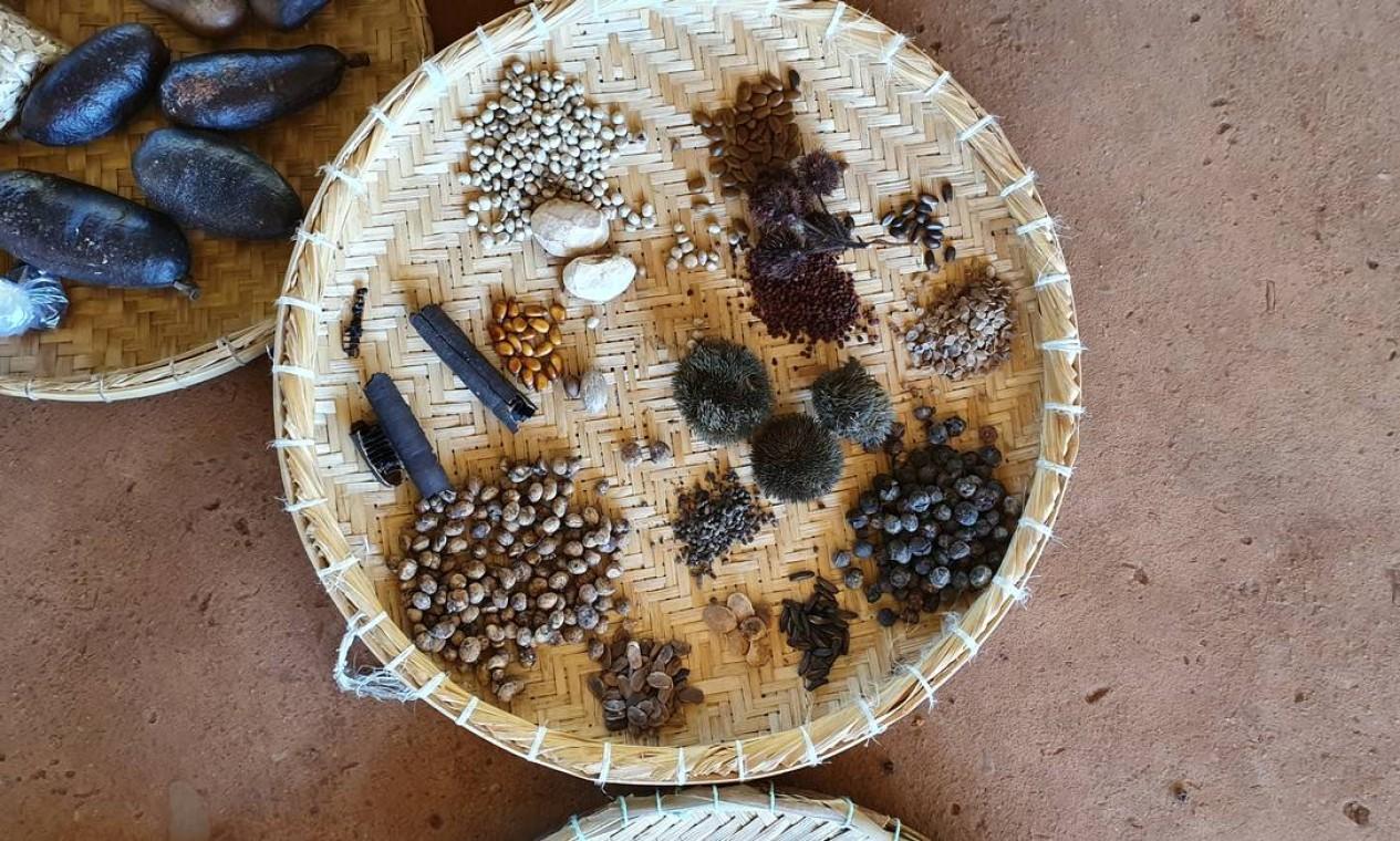 """Um cesto de floresta: algumas das sementes coletadas pelos agricultores do assentamento de Nova Conquista, em Bom Jesus do Araguaia. Na """"receita"""", pau jangada, angico e jatobá-de-brinco Foto: Ana Lucia Azevedo / local"""