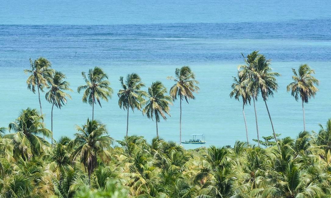 Praia do Toque, em São Miguel dos Milagres, Alagoas Foto: Marco Ankosqui / Ministério do Turismo / Divulgação