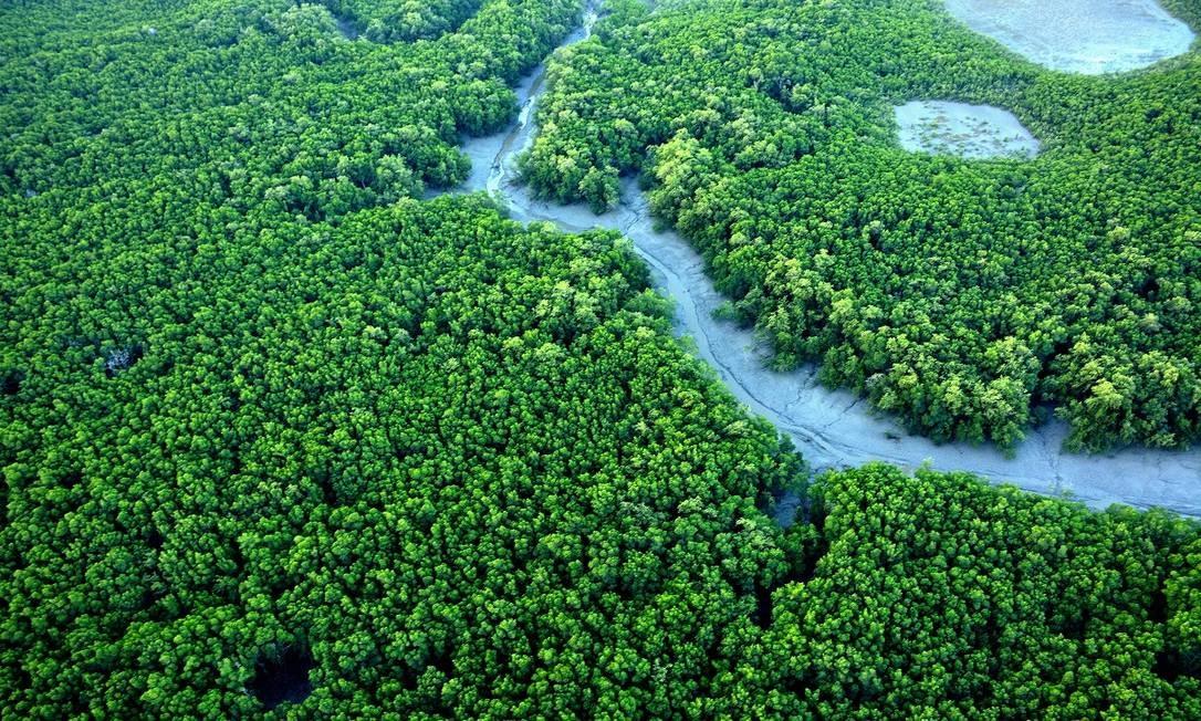 Imagem aérea de manguezais das Reentrâncias Maranhenses, no Maranhão Foto: Meireles Jr. / Secretaria de Turismo do Maranhão / Divulgação