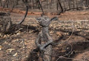 Filhote de canguru fica preso a cerca nas colinas de Adelaide e morre carbonizado Foto: Brad Fleet / The Advertiser