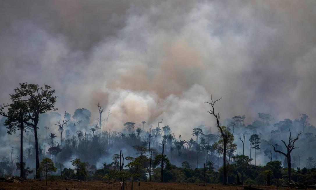 Queimada devasta a Floresta Amazônica em Altamira, no estado do Pará. Foto: JOAO LAET / AFP
