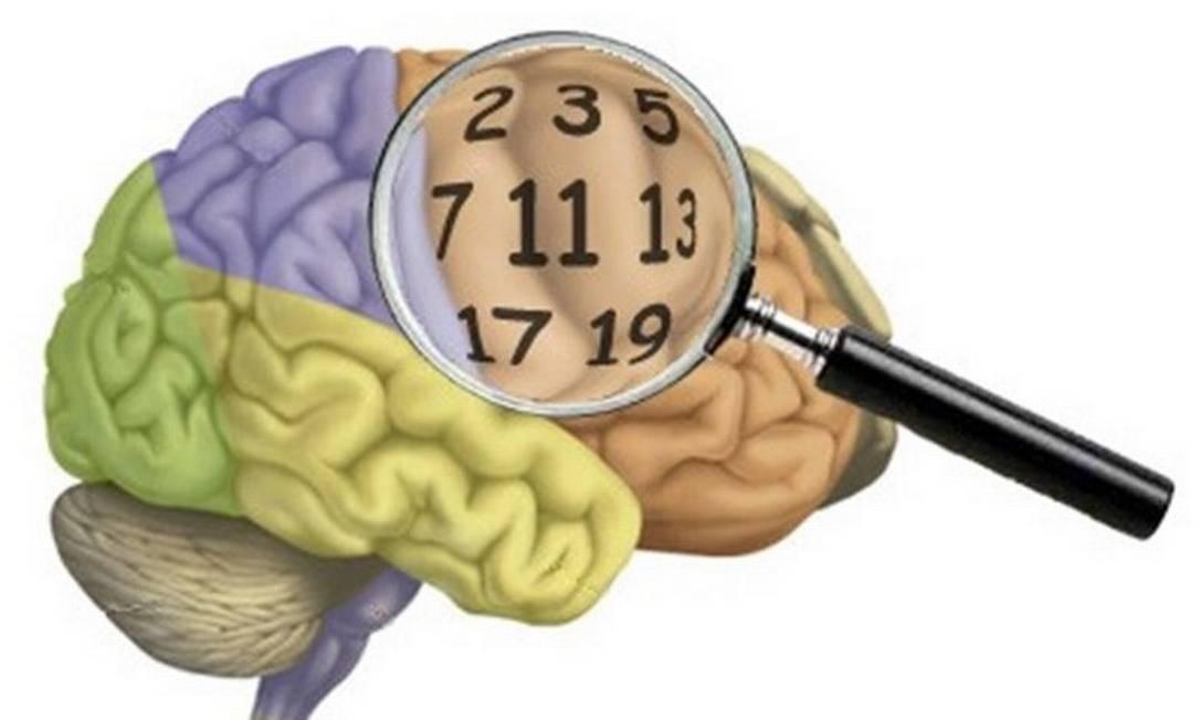 Aprender matemática é difícil para qualquer criança. É diferente da fala, considerada como uma habilidade humana inata, possibilitada pela evolução do cérebro dos primatas. Foto: Reprodução