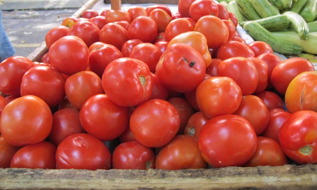 Em dezembro, o preço do tomate saltou 21,69%. No acumulado de 2019, o produto registrou uma queda expressiva, de 30,45% Foto: Lara Mizoguchi / Agência O Globo