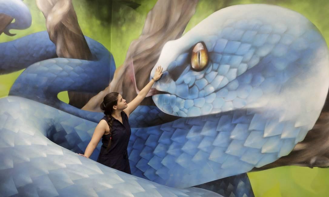 Pinturas 3D brincam com ilusão de ótica do público Foto: Domingos Peixoto / Agência O Globo