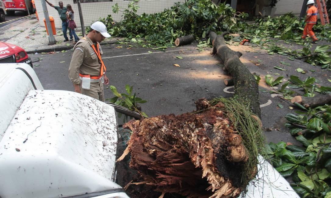 Chuva causa queda de arvore que atinge carro estacionado na rua República do Peru, em Copacabana Foto: Gabriel de Paiva / Agência O Globo